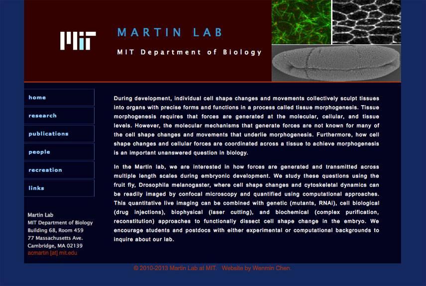 First website design for Martin Lab at MIT by Wenmin Chen