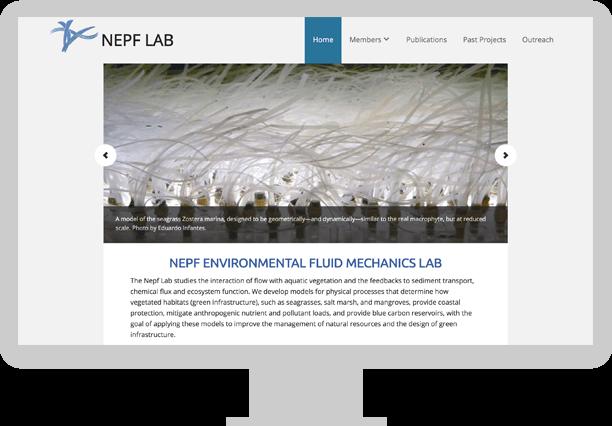 Nepf Lab desktop screen demo